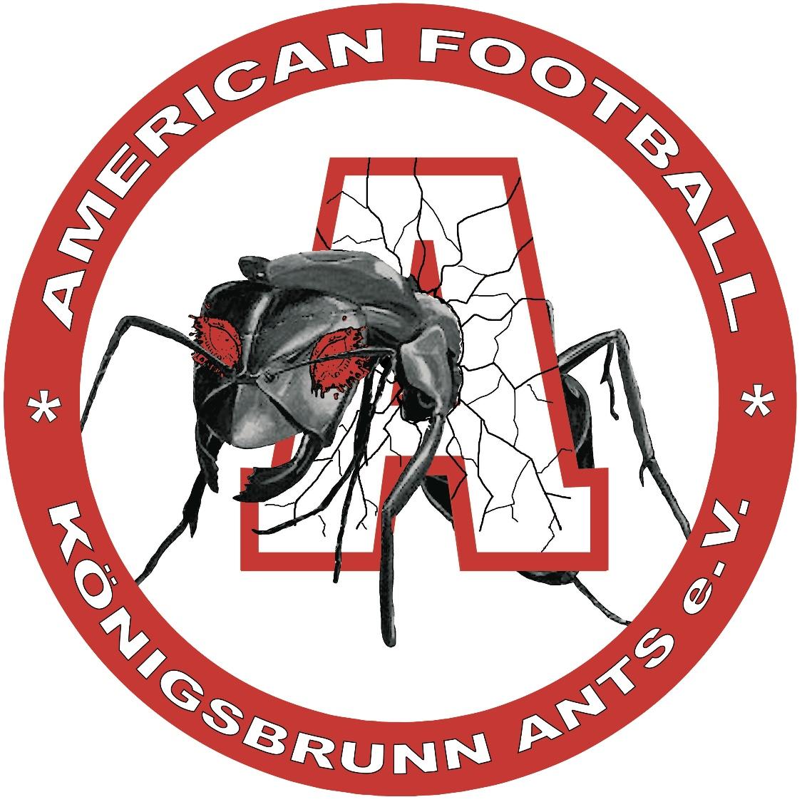 koenigsbrunn-ants.jpeg